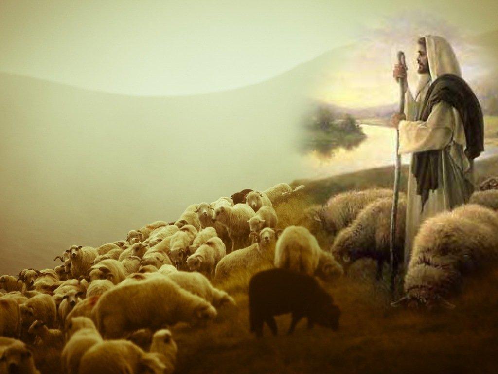 Jesus - The Good Shepherd